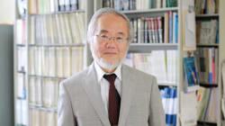 Le Nobel de médecine pour la compréhension d'un processus de
