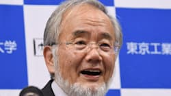 Japanese Scientist Wins Nobel Prize In