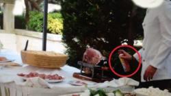 Cameriere spruzza lo spray sul buffet nuziale preso d'assalto dalle