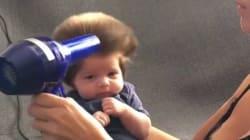 A sus nueve semanas este bebé luce un pelazo que ya quisieran