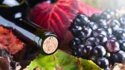 12 vins pour un automne haut en
