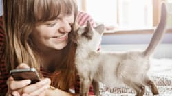 How To Be the Best Pet Owner
