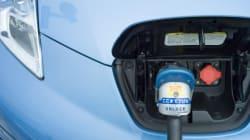 Vers l'interdiction des moteurs à essence sur l'Île de