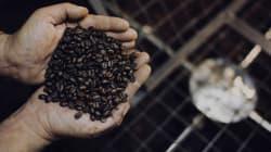 5 città (italiane) dove gustare il caffè è davvero un piacere