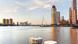 Rotterdam: la città fenice. 8 buoni motivi per
