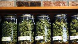Canada May Face Marijuana Shortage When It's Legalized: