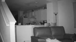 Escuchaba ruidos de madrugada, puso una cámara y esto es lo que