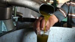 È finito l'olio italiano: