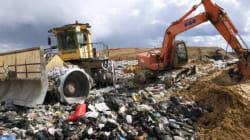 Tariffa rifiuti: facciamo luce in una selva
