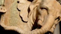 Vandali sfregiano l'Elefante del