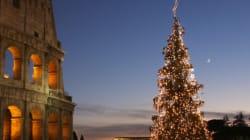 25 des plus beaux sapins de Noël à travers le