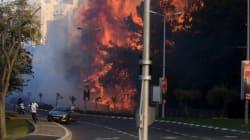 Les images du violent incendie qui ravage
