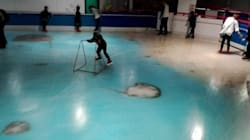 Cette patinoire avec 5000 poissons congelés fait un tollé au