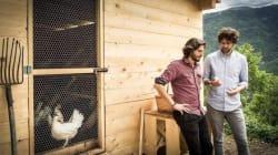La cucina del Trentino merita un viaggio: qui le erbette fanno il successo i ristoranti