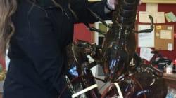 Un végane achète un homard géant de 120 cm pour le