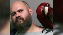 Parrot Named 'Bird' Photobombs Mug Shot After Owner's
