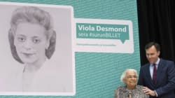 Here's What You Need To Know About Viola
