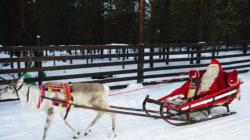 Même les rennes du Père Noël sont victimes du réchauffement