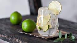 A.A.A cercasi assaggiatore di gin per testare nuovi drink in giro per
