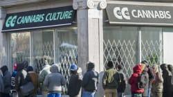 Descentes policières chez «Cannabis Culture»: 9 personnes