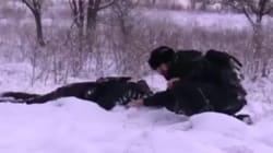 Le président tchétchène filmé en train de «traquer» des islamistes