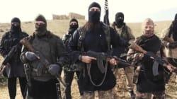 Cosa c'entra il terrorismo islamico con l'analisi