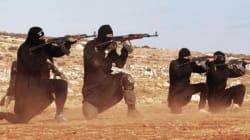 Giovani, maschi e terroristi. Le radici demografiche e sessuali del