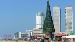 Ce pays affirme posséder l'arbre de Noël le plus haut du