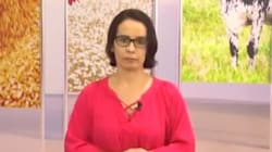 Esta jornalista disse que índio de verdade deve morrer 'de malária, de tétano, do