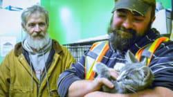 Garbagemen Rescue Frozen, Urine-Soaked Kitten From N.B.