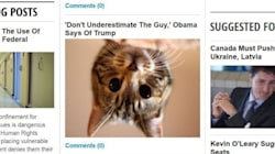 Turn Trump Into A Cat (And Other Sanity-Saving Internet