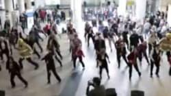 Vidéo: coup de coeur à