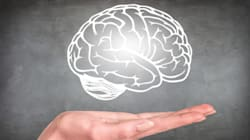 Your Brain Shape May Determine Your