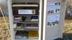 Il frigo abbandonato sulla riva del fiume trasformato in una biblioteca aperta a