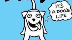Cosa direbbe il vostro cane se potesse