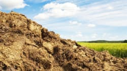 Dumping Massive Poop Pile Next To Neighbours Costs N.B. Couple