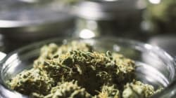 Legal Recreational Pot Is Nearer Than You