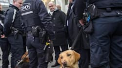 Sventato attacco terroristico imminente in Francia. Fermate quattro