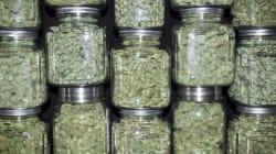 La marijuana médicinale serait inappropriée pour les troubles