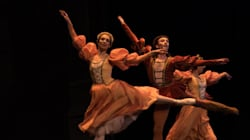 Découvrez les photos du ballet «Le Lac des