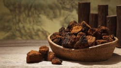 7 Reasons To Start Drinking Chaga