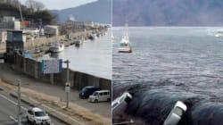 Séisme au Japon: Avant et après...