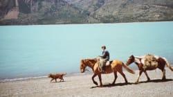 Super expo sur la Patagonie à
