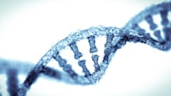 A un passo dal primo Dna sintetico: costruiti 6 cromosomi dal lievito del