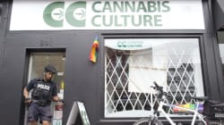 Culling Cannabis Dispensaries Exposes Trudeau's
