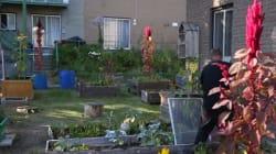 Montréal, immense terrain de jeu pour citoyens