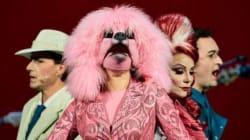 Madame Pink, la preferita a quattro zampe di