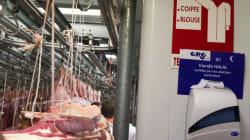 Viande halal: le PQ craint que l'abattage rituel religieux devienne la