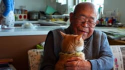 「きなことじいじ」のストーリー。一匹の猫がおじいちゃんの笑顔を取り戻した