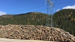 Hydro-Québec vend le bois de la Romaine à
